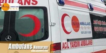 Ambulans Numarası